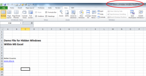 Excel File With More Than One Window